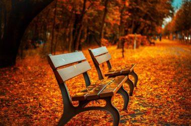 tmavší podzimní odstíny