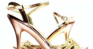 Základ dámského botníku