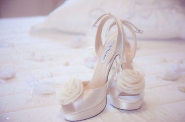 Čtyři typy bot